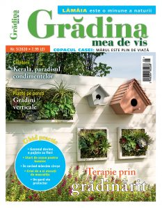 Gradina-de-vis-05-2020