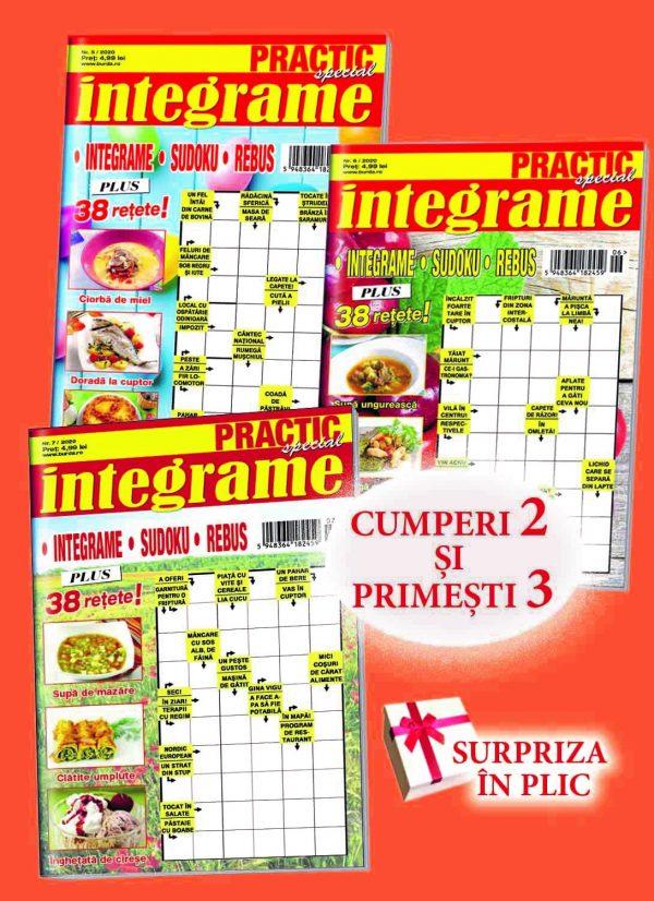 Practic Integrame 3 reviste